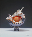 "Sea Shell & Glass Bowl 14""x16"" Oil on Linen"